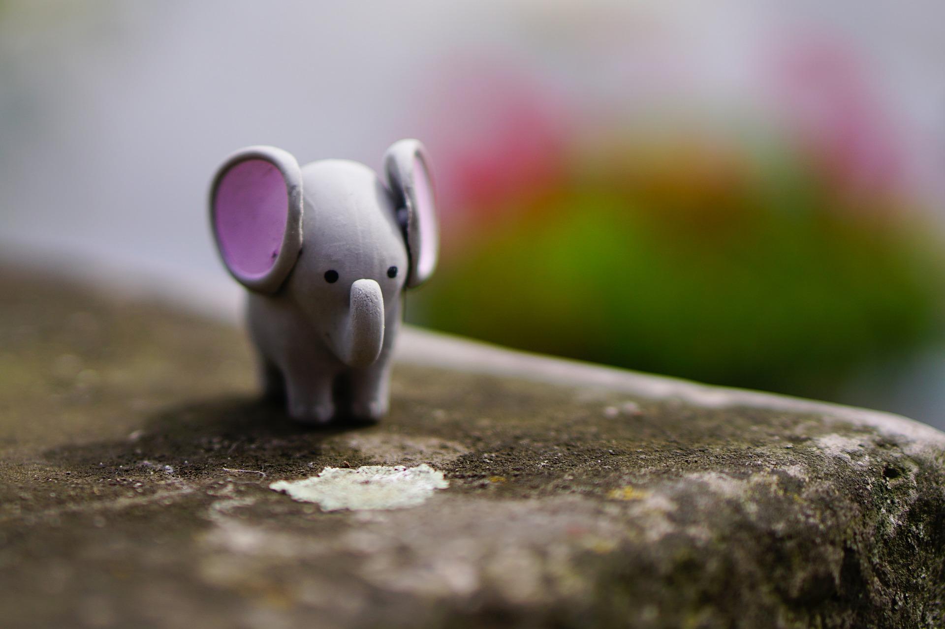 elephant-1606188_1920.jpg